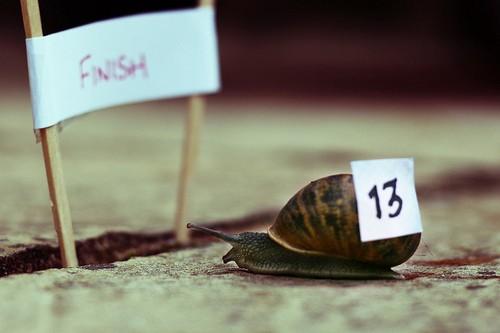 Vantagens e Desvantagens da Linguagem Python